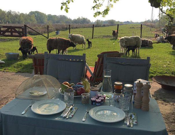 Buiten ontbijt bij the Dutch Farmhouse B&B